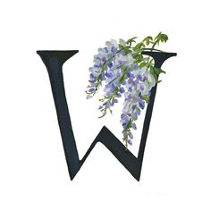 W is for Wisteria (Laura Best)