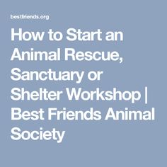 How to Start an Animal Rescue, Sanctuary or Shelter Workshop | Best Friends Animal Society