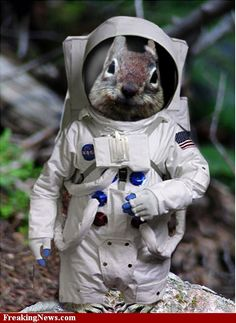 Beam me up Squirrelly. Ha ha HENRY, what fun. G