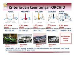Kriteria dan Keuntungan Orchid