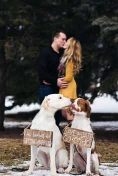 19 Adorable Doggie Save-The-Dates For When You're Having A Ruff Day | Huffington Post