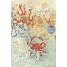 Found it at Wayfair - Floral Frenzy Coastal IV Painting Print on Wrapped Canvas
