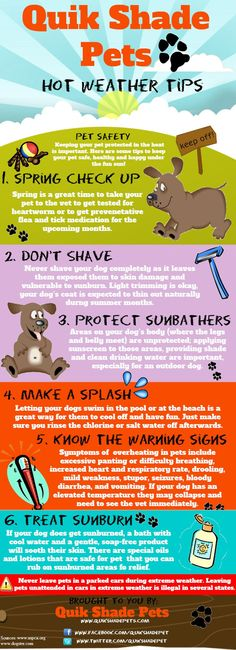 We should all take extra steps to keep our pets safe during the Summer so here are 22 Summer Pet Safety Tips...infographics that can save your pets life!!!!