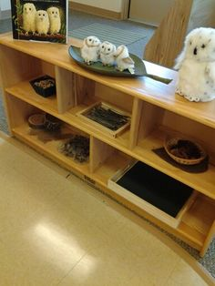 "Use ""Owl Babies"" to inspire children's play with loose parts; natural feathers, stones, sticks, pinecones, tree slices"