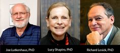 Horwitz Prize Awarded for the Discovery of Bacterial Cell Structure   Columbia to  Award 2012 Horwitz Prize to Richard Losick, Joe Lutkenhaus, and Lucy Shapiro for Discovering the Intracellular Structure of Bacterial Cells