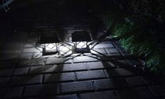 Switching on automatically at dusk and shining for up to 8 hours, these LED solar-powered lamps can decorate a garden, deck or balcony