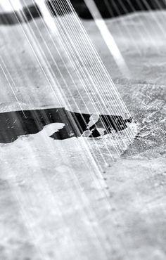 Sarah Nance | (i missed you) for twenty-nine years (detail), 2012 | silk string, evaporated salt water, natural light