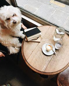 792 отметок «Нравится», 10 комментариев — Fragments (@fragmentsparis) в Instagram: «☕️ Photo by @elieyobeid via @seemyparis #thisisfragments #fragmentsparis #coffeeshop #coffee…»