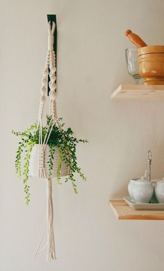 Modern Macrame Made in Bay Area California > This hanging planter will look great in any room of your home, even hang it in the kitchen with