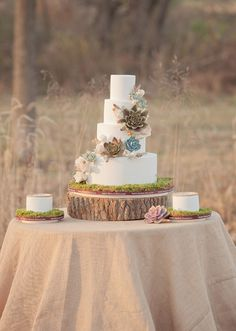 Tiered White Wedding with Dramatic Succulents