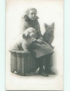 Pre1918 rppc GIRL WITH BOW IN HAIR & CUTE DOGS Springfield IL r7016