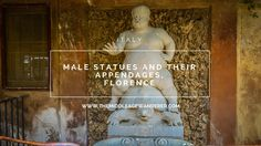 Male Statues & their Appendages