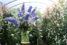 Love the delphiniums. Great for centre piece of tables