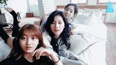 Sana ft. Jihyo Dahyun and Nayeon