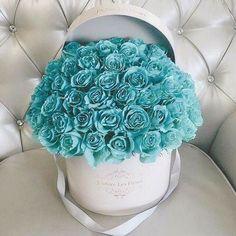 New Embroidery Animals Geometric Ideas Azul Tiffany, Beautiful Roses, Beautiful Flowers, Million Roses, Luxury Flowers, Blue Roses, Types Of Flowers, Flower Boxes, Teal Blue