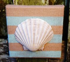 Sea Shell Wall Art