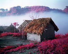 Beautiful Pink Landscapes in Congo – Fubiz Media