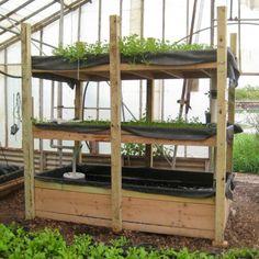 Macetas y mesas de cultivo en huertos urbanos ecológicos (Nivel Básico). Online