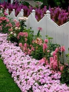 What a beautiful flower Garden in front of and behind this charming fence..