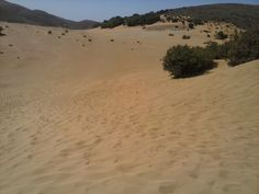 sand dunes Beautiful Islands, Dune, Country Roads, Beach, Water, Outdoor, Gripe Water, Outdoors, The Beach