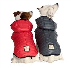 Citizen Dog Coat 3 Colors - Free Shipping