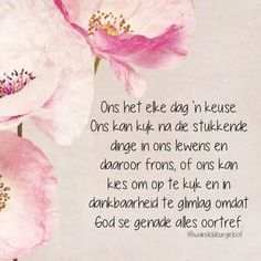 Kies om op te kyk en in dankbaarheid te glimlag omdat God se genade alles oortref.
