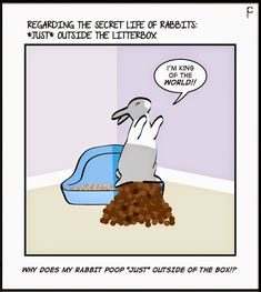 Raging Bunnies: REGARDING THE SECRET LIFE COMIC