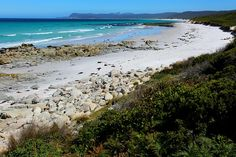 6 Beaches in Tasmania you must set foot on