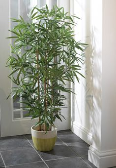 Home Decor Artificial Trees Plants Stunning Bamboo Tree Allowing The Light To Flood Through Very Realistic Colonial