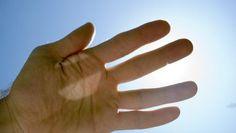 #¿Por qué las manos tienen cinco dedos y no siete? - Canal 44 El Canal de las Noticias: El Diario de Chihuahua ¿Por qué las manos tienen…