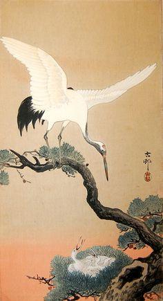 "japaneseaesthetics: ""  White Crane with Chick by Ohara Shoson . 1910, Japan """