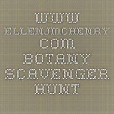 www.ellenjmchenry.com botany scavenger hunt