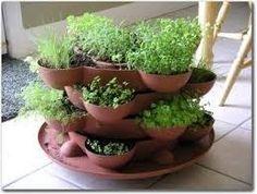 Indoor/outdoor herb garden.