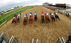 Heading for the finish line. Pimlico Race Course.
