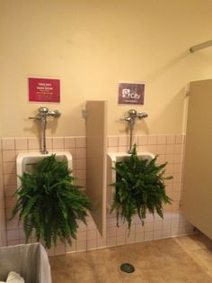Men's restrooms transformed for #thrchapelwomem/Freefall conference