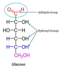 Structure of glycosidic bond biochemistry pinterest polyhydroxy aldehyde ccuart Image collections