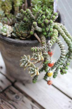 w ladybug decoration