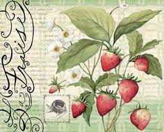 Lang May 2014 wallpaper: Fresh Picked