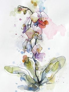 Orchid Watercolor Painting - Five Orchids by Wendy Westlake Painting & Drawing, Watercolor Painting Techniques, Alcohol Ink Painting, Alcohol Ink Art, Watercolor Paintings, Watercolors, Abstract Watercolor, Watercolor And Ink, Watercolor Flowers