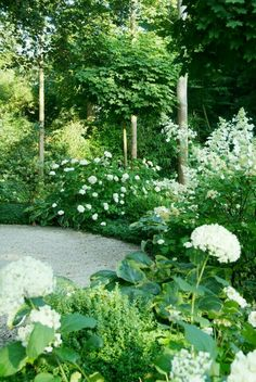 Garden design: Buro Robert Broekema- Amsterdam Layout of the garden: Van Raaijen Hoveniers - Almere Limelight Like and Annabelle hydrangeas with variegated hostas, box woods, maple, and bamboo? Back Gardens, Small Gardens, Outdoor Gardens, Green Garden, Shade Garden, Tropical Garden, Moon Garden, Garden Borders, White Gardens