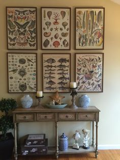 Framed Cavallini papers in Ikea frames on a tall wall
