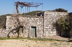 Old house Edde Batroun