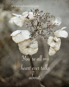 You're all my heart ...