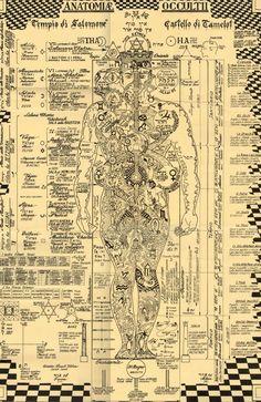 Tech Discover Der okkulten Anatomie-Druck Kabbalah Alchemie Baum des symbols italian The Occult Anatomy Print - Wiccan Magick Witchcraft Rose Croix Kundalini Les Chakras Yoga Chakras Human Body Art Occult Art Tarot, Rose Croix, Kundalini, Les Chakras, Yoga Chakras, Human Body Art, Occult Art, The Occult, Book Of Shadows