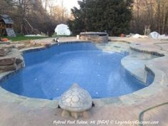 In Pool Volleyball Net Hybrid Swimming Pools And Themed