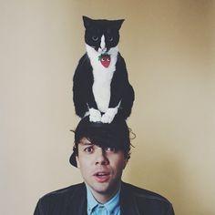猫帽子 3