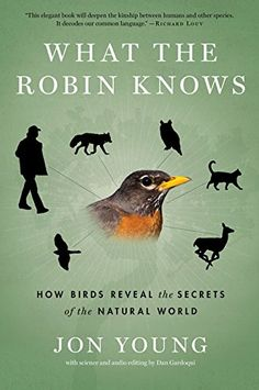 What the Robin Knows: How Birds Reveal the Secrets of the Natural World by Jon Young http://www.amazon.com/dp/054400230X/ref=cm_sw_r_pi_dp_LhtZwb1YJ4TYT