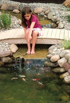 Pond Bridges For Closer View to Fish Ponds...