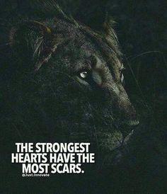"""""""Hati yang kuat memiliki bekas luka yang banyak"""""""