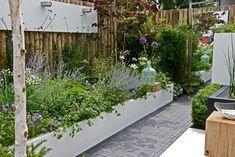 Garden, Plants, Balcony, Garten, Gardening, Plant, Outdoor, Gardens, Yard